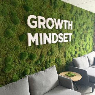3D logo - Growth Mindset