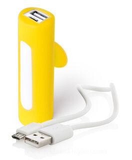 USB power bank